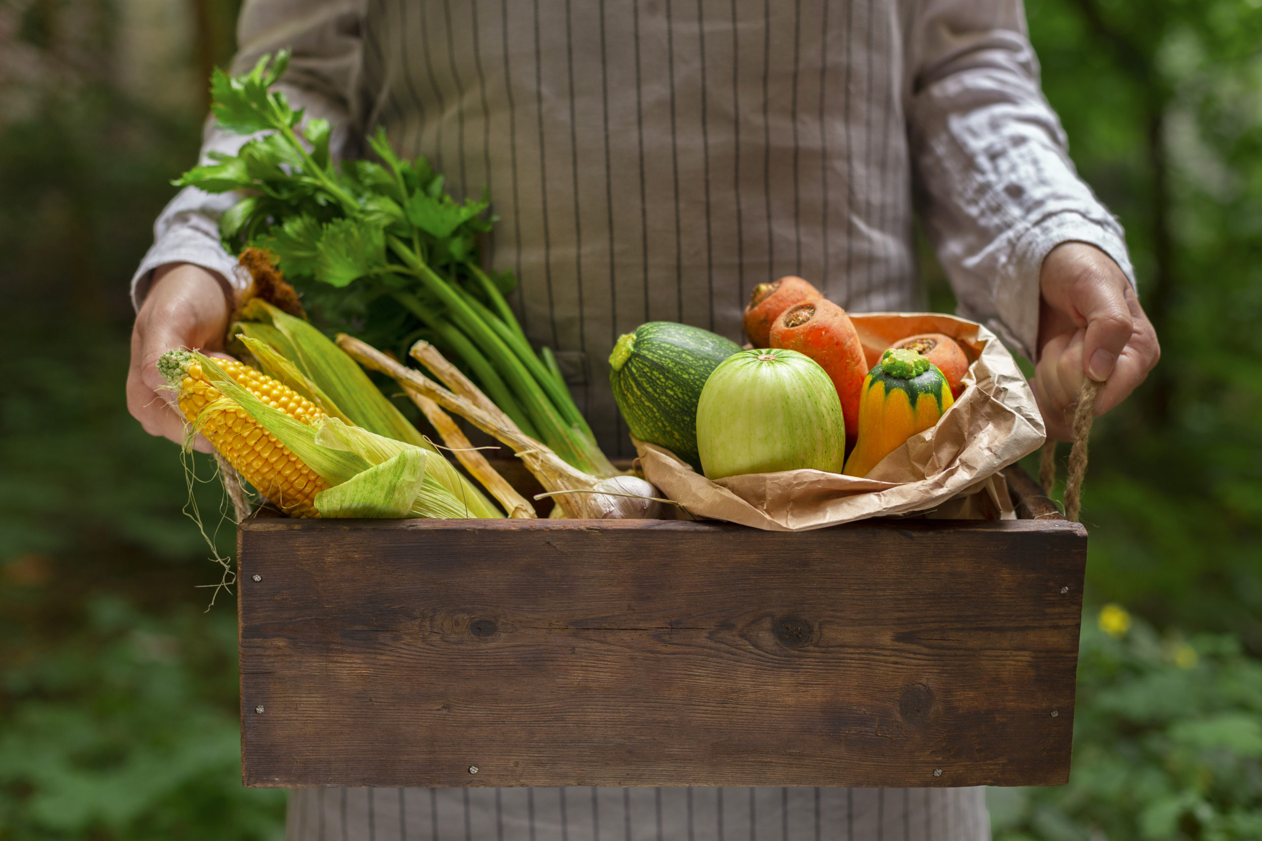 Woman holding big basket with vegetables from garden over green background
